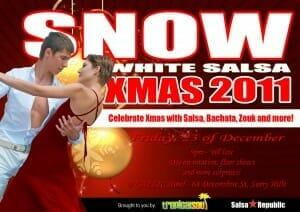 Snow 2011 flyer-Salsa